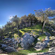 Encuentra al perro... Find The dog...  #Jaén #naturaleza #nature #dog #dogs #field #campo #árboles #trees #tree #árbol #blue #green #rocas #rocks #doggy