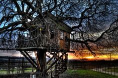 """""""Wood tree houses are rarely timeless, built as they are into the ever-changing natural environment and often constructed natural materials such as woods that surround them. The plan is often to make them play places more than permanent homes. Some are created as novelty buildings for rent to the public (such as hotels, inns and other vacation properties) while others are intended to be lofted restaurants, temporary homes or forts for children."""""""
