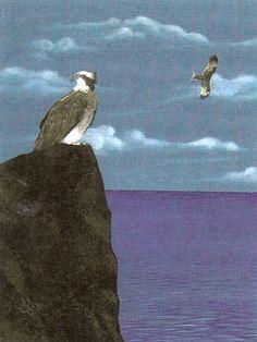 Il falco sullo stretto, tavola di Ilaria Caputo.