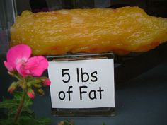 5 lbs of fat...