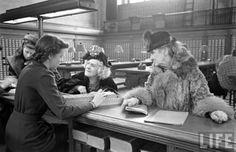 New York Public Library. 1944 Photographer: Alfred Eisenstaedt