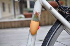 "If you're always on the go, why not take your little garden with you! ""Bike Planter"" - how cute :)"