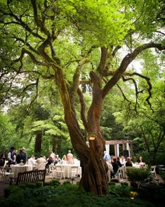Leach Botanical Garden-18 Botanical Gardens Where You Can Say Your I Do's Surrounded By Beauty | Martha Stewart Weddings