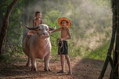 Photo Unseen baffalo (small) par sarawut Intarob on 500px
