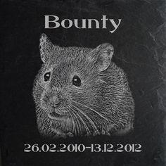 HAMSTER GRABSTEIN Tiergrabstein Grabplatte Hamster-003► Textgravur ◄ 20 x 20cm | eBay