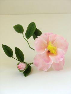 Gumpaste Pale Pink Camillia. - Shaile's Edible Art