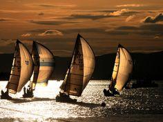and sail boats