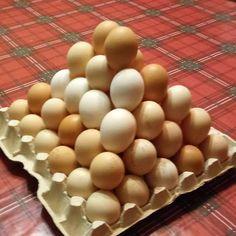 Савельев Андрей (@savelev.andrey.kzn) • Фото и видео в Instagram Eggs, Breakfast, Food, Morning Coffee, Essen, Egg, Meals, Yemek, Egg As Food