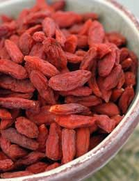 39 Best Growing Goji Berries Images Goji Berries Growing Goji