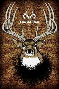 Its Realtree time.