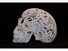 Crania Anatomica Filigre (large) by Joshua Harker on Shapeways