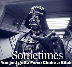 Sometimes You Just Have To Force Choke A Bitch