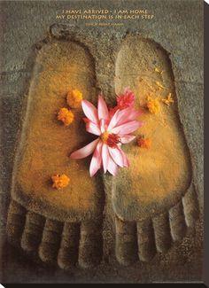 Thich Nath Hanh, Jag har kommit, engelska - Affischer på AllPosters.se