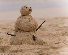 12 fun Beach Day Activities