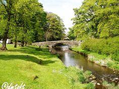 David Toft (@dmtoft) | Twitter Cocker Spaniel, Dublin, Yorkshire, Ireland, Golf Courses, David, River, Garden, Outdoor