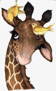 Robin James - Giraffe and birds illustration inspriation Giraffe Pictures, Cute Pictures, Bird Drawings, Animal Drawings, Drawing Cartoon Animals, Horse Drawings, Robin James, Baby Animals, Cute Animals