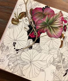 36 Ideas For Doodle Art Flowers Sketchbooks Silk Painting, Painting & Drawing, Coloring Book Art, Colouring, Adult Coloring, Illustration Botanique, Colored Pencil Techniques, Coloured Pencils, Color Pencil Art