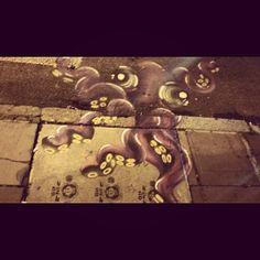 Octopus - Cidade Baixa