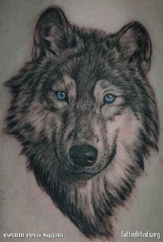 Lobo p/ peito esquerdo