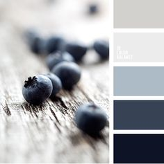 In Color Balance - Color Palette Colour Pallette, Colour Schemes, Color Combinations, Color Schemes For Office, Rustic Color Schemes, Black Color Palette, Blue Palette, Color Balance, Interior Paint Colors