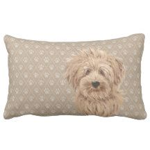 Labradoodle Love™: products on Zazzle Labradoodle Dog, Australian Labradoodle, Lumbar Pillow, Throw Pillows, Brown, Dogs, Design, Cushions, Pet Dogs