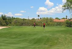 Grab a friend...or two...or three...and head on out to The Views Golf Club at Oro Valley.