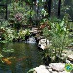 Gardening Green - Re-Scape.com