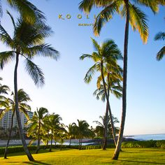 Happy #AlohaFriday! Take some time to explore #KoOlina! Visit us: www.koolina.com