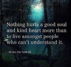 Nothing hurts a good soul and kind heart more than to live amongst people who can't understand it.