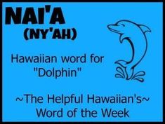 hawaiian tattoos traditional - Famous Last Words Hawaiian Words And Meanings, Hawaiian Phrases, Hawaiian Sayings, Visit Hawaii, Aloha Hawaii, Hawaii Travel, Hawaii Honeymoon, Hawaii Tattoos, Hawaiian Tattoo Traditional