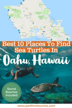 Find out where the top 10 places are to see and swim with sea turtles in Oahu Hawaii are! Well-known and secret beaches included. Turtle Beach, Hawaii Life, Oahu Hawaii, Hawaii Hotels, Pearl Harbor, Secret Beach Oahu, Makua Beach, Oahu Vacation, Italy Vacation