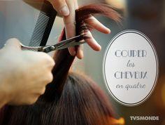 Couper le cheveux en quatre