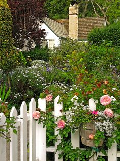 A cottage garden with white picket fence