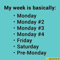 The typical week...