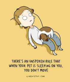 So true! I can't move if my dog is in move cause otherwise he gives gives this dirty look and walks away!! -Ta