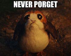 Never porget