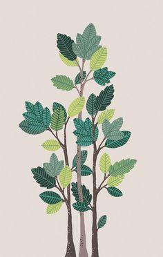 Branch Multi Pillow by Pillow Talk at Gilt Plant Drawing, Painting & Drawing, Illustrations, Illustration Art, Bohemian Bedding, Madhubani Painting, Leaf Art, Doodle Drawings, Home And Deco