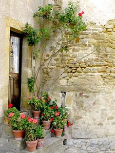 Stairs outside the house attached to the Porte de Champagne, Levroux, France. Photo by Randi Kuhne.