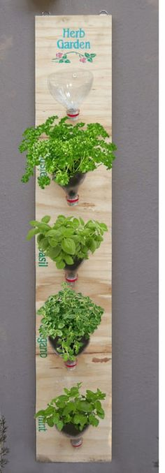Whether you are a lover of green and growing things or a lover of fresh ingredients in your food, these indoor herb garden ideas are absolutely fantastic.