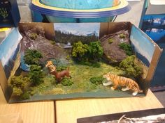 Animal Diorama Shoebox | Thank you to everyone in Ms. Barnard's third grade class for their ...