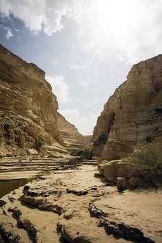 Ein Avdat canyon . Israel