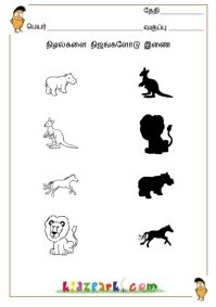 Tamil Shadow Fun , Fun worksheet for kids, Kindergarten Tamil Skills