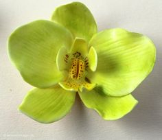 Tutorial: How to make an orchid from fondant or gum paste / flower paste. You can use this Moth orchid on wedding cakes, party cakes, birthday cakes etc.