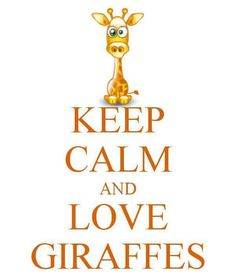 KEEP CALM AND LOVE GIRAFFES. Another original poster design created with the Keep Calm-o-matic. Buy this design or create your own original Keep Calm design now. Giraffe Decor, Giraffe Art, Cute Giraffe, Elephant, Giraffe Quotes, Beautiful Creatures, Animals Beautiful, Cute Animals, Zebras