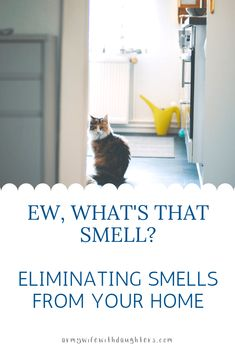 Ew, What's That Smell? Eliminating smells in your home. - Army Wife With Daughters