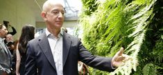 The Incredible Science Behind Why Amazon Filled Its New Office With 40,000 Plants | Inc.com