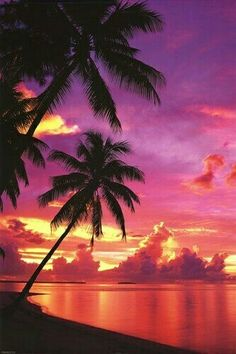 Tahitian Sunset Photography poster Tahiti Beach with Palm Trees Beautiful Sunset Pictures, Beach Pictures, Pretty Pictures, Beautiful Scenery, Nature Pictures, Beautiful World, Beautiful Places, Beautiful Ocean, Beautiful Sunrise