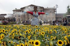 French garden appears in St George's Square for Tour de France ...