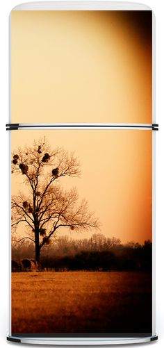 I love this idea - full photo decals for your appliances. I pray they'll customize this for my ugly, white chest freezer. Painted Fridge, Fridge Makeover, Yard Sale Finds, Chest Freezer, Freezers, Refrigerator Magnet, Home Decor Kitchen, Pretty Cool, Home Renovation