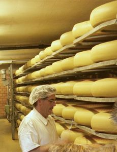 Emmental Homeland, Ancestry, Queso, Cheddar, Switzerland, Choices, Cheese, Dreams, Drink